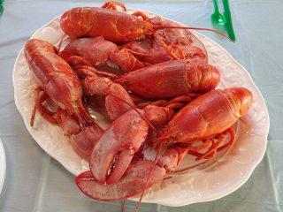 pi-lions-lobster-boil-plated